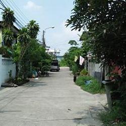 ย่านถนนเทพารักษ์-หนามแดง-สำโรง พร้อมต้นมะม่วงใหญ่หลายสิบปี ร รูปเล็กที่ 3