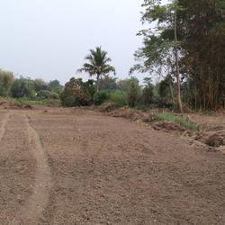 ขายที่ดิน สำหรับที่อยู่อาศัย และทำการเกษตร รูปเล็กที่ 4