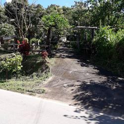 MR83ขายบ้านไม้สองชั้นบนเนินสูงมีเนื่อที่0-3-95ไร่ติดทางหลวงช รูปเล็กที่ 5