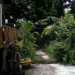 ขายบ้าน 2 หลัง ในที่ดิน 100 ตรว. (ติดตลาดนนทบุรี) 089-844-8404 รูปเล็กที่ 3