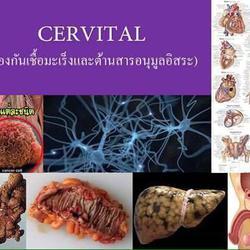 CERVITAL เซอร์วิทอล (สีม่วง),บำรุงผิวพรรณ, บำรุงรากผม,ฟื้นฟู รูปเล็กที่ 6