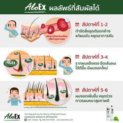 AloEx Hair Regrowth Serum เซรั่มสำหรับคนผมบางและผมร่วง อโลเอ็กซ์ (ส่งฟรี EMS) รูปเล็กที่ 6