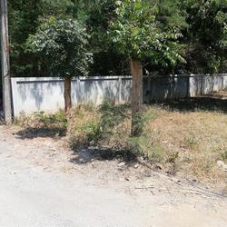 SRP01ขายที่สวน2-2-05.7ไร่ติดทางสาธารณประโยชน์ที่เชื่อมกับถนน รูปเล็กที่ 1