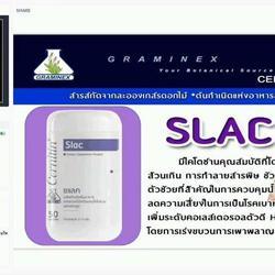 SLAC ซแล็ค,ลดไขมันส่วนเกินในร่างกาย,ลดระดับไขมันในเลือดสูง รูปเล็กที่ 4