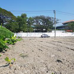 ที่ดินเปล่าถมแล้วให้เช่าในถนนนวมินทร์ กรุงเทพมหานคร รูปเล็กที่ 2