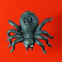 แมงมุมตาเพชร หลวงปู่สุภา จ.ภูเก็ต รูปเล็กที่ 1